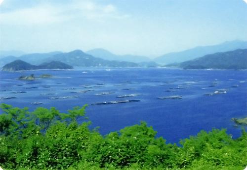 愛媛県宇和島市遊子地区 風景